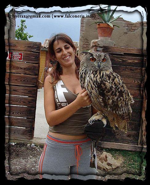 Civetta sul binario 1 - Pagina 2 Gufo_reale_eagle_owl_021a
